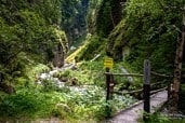 Radurschl-Schlucht nearby Pfunds