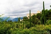 Botanical gardens of the Trauttmansdorff Castle in Meran (Italy)
